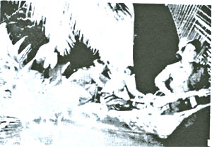 taukhongso2