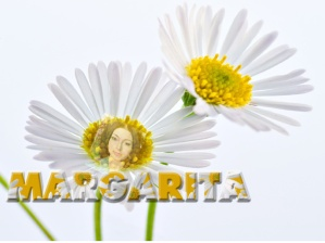 margarita-title